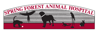 Spring Forest Animal Hospital | Raleigh NC | Veterinary