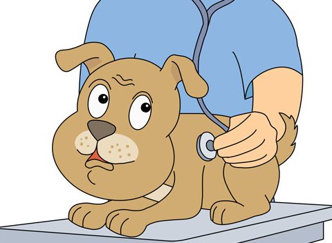 dog at the vetinarian clipart