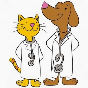 -cat-and-dog-dressed-as-pet-doctors--Stock-Vector-cartoon - 3 pic for inside story