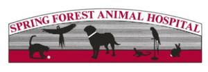 logo_letterhead